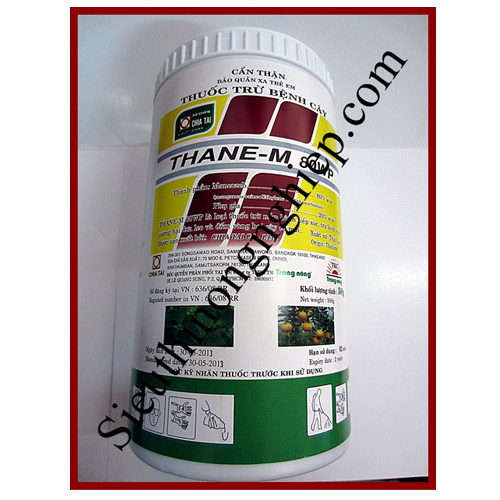 thane-m-80wp