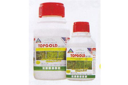 TOPGOLD-600D-300×300