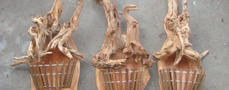 Cách Trồng lan trên gỗ lũa