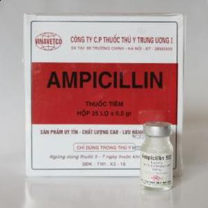 Ampicilin_1